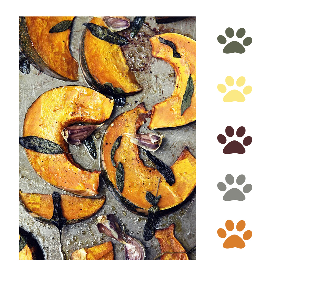 Pumpkin Food Palette
